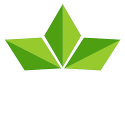 Kudzu Web Design